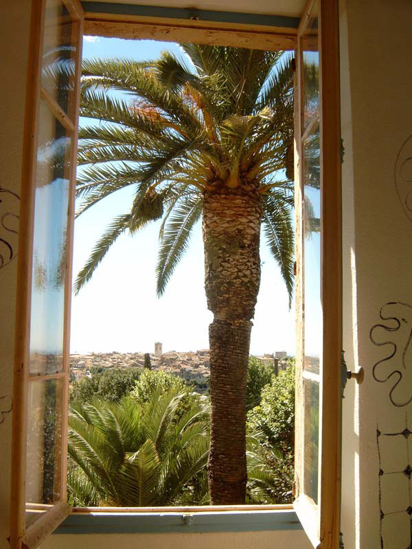 Villa_Le-Reve_Palm_Tree